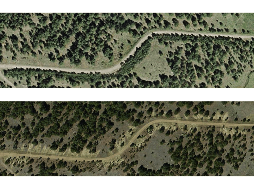 These two aerial images of Roan Mountain Road show pre-thinning work (top photo, June 2010) and post-thinning work (bottom, June 2011). Approximately 2000 trees adjacent to the road were thinned. Image credit: Dave Cawrse