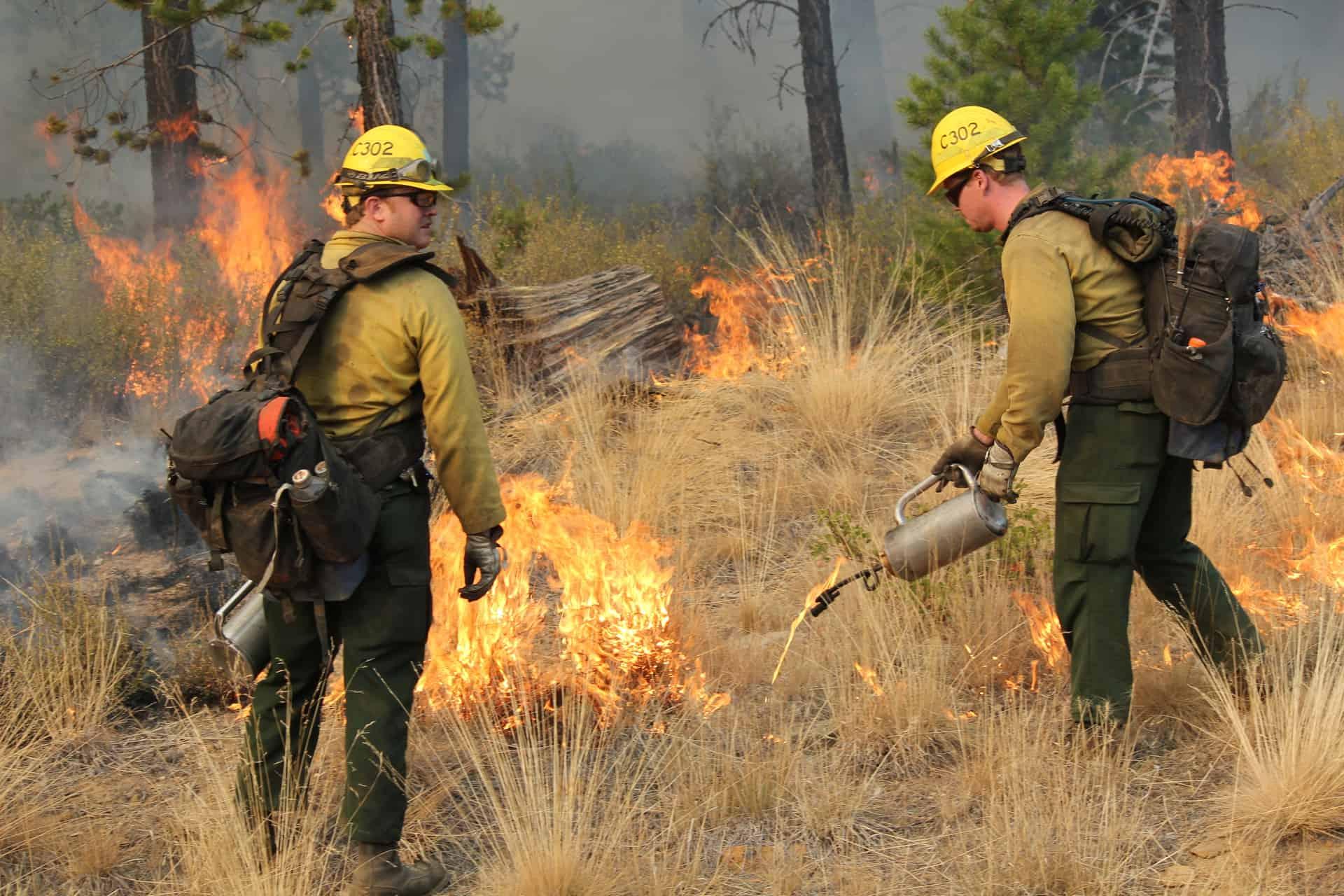 Prescribed burning in Oregon