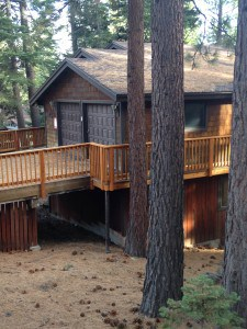 Pine needles throughout Tahoe Basin neighborhoods can create a mitigation challenge for many homeowners.