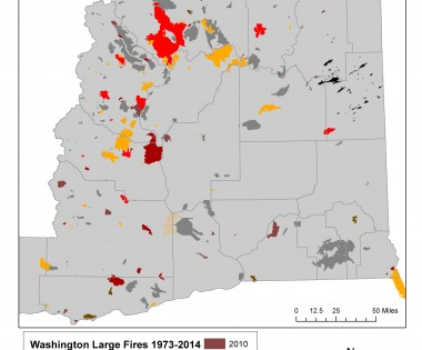 Eastern Washington Report Represents a Big Step Forward for Forest Health, FAC