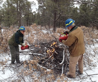 Forest Guild Completes First Controlled Burn on Private Land in La Cueva, New Mexico