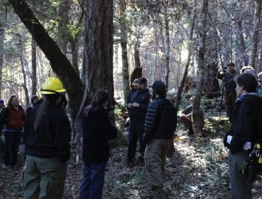 Integration of Cohesive Strategy Goals a Reality in California's Klamath Mountains