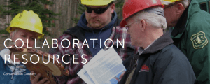 Collaboration tools from NFF. Image from www.nationalforests.org