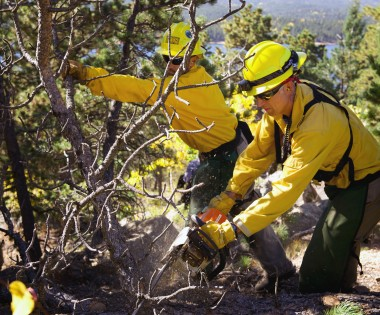 Prescribed Burning in Colorado's Front Range: An After Action Review
