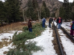 Attendees bought permits to cut their Christmas trees in the San Juan National Forest. Credit: Pam Wilson.