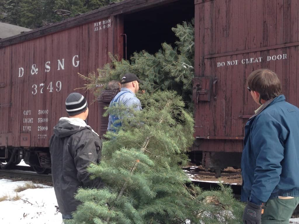 28 Christmas Tree Permits Durango Colorado Update Christmas Tree Train Ride Pagosa