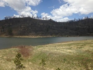 The 2011 Track Fire burned at high severity in Sugarite Canyon State Park in New Mexico, which serves as the municipal watershed for the city of Raton. Photo Credit: Jesse Abrams