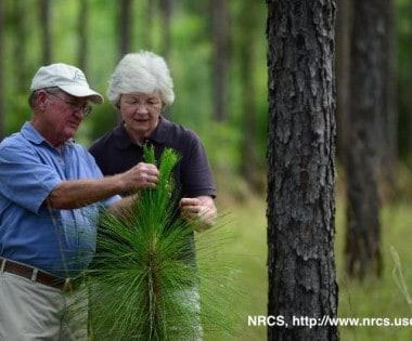Wildfire Mitigation and Assistance through USDA-NRCS