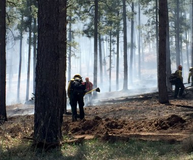 Cooperative Thinning, Burning and Training Help Create A Better Wildfire Outcome
