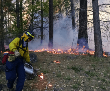 Tips on Providing Prescribed Fire Training to Volunteer Fire Departments