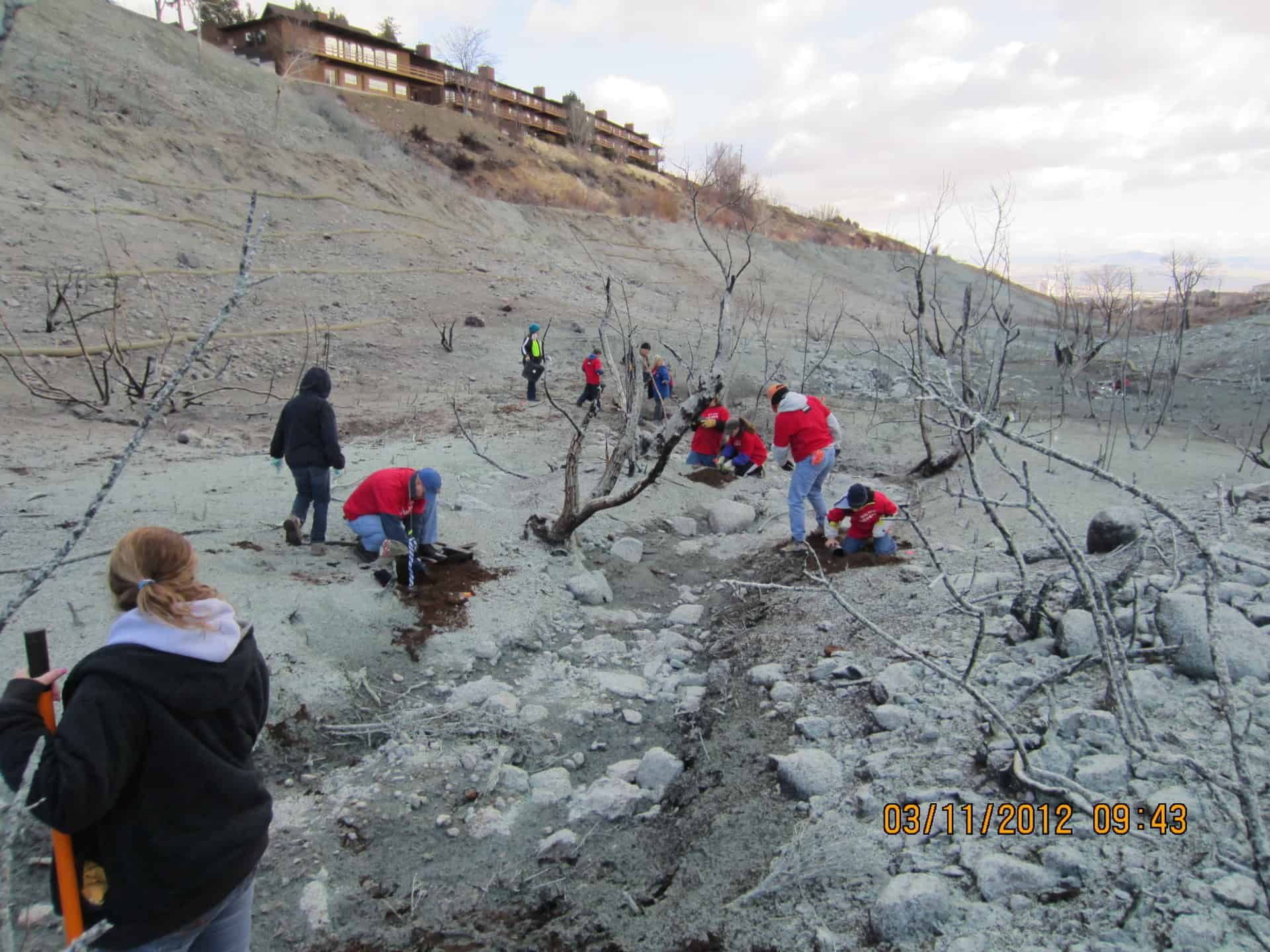 Much of NLT's fire-related work has been on post-fire restoration. Here volunteers work to replant after the Caughlin Ranch fire in 11/11. Credit: Tracy Visher