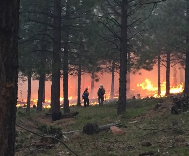 Using Fire to Treat Privately Owned Forests in Oregon: The Burn Boss Perspective