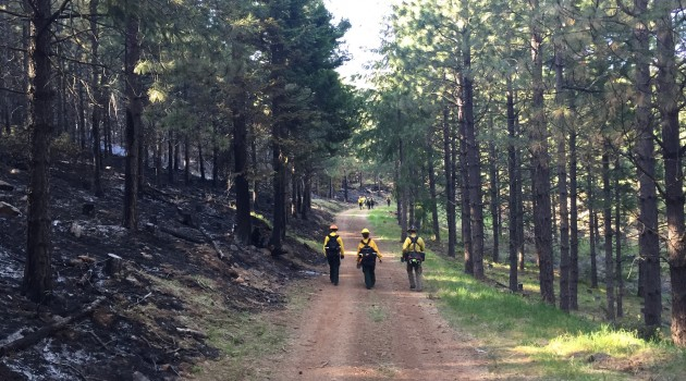 Using Fire to Treat Private Forestland in Oregon: The Firing