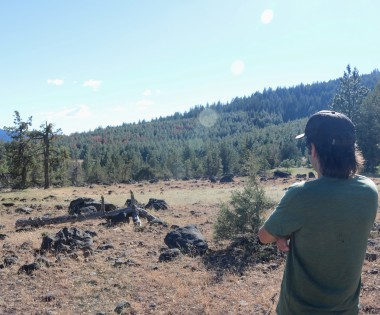 Using Fire to Treat Privately Owned Forests in Oregon: Landowners' Perspectives