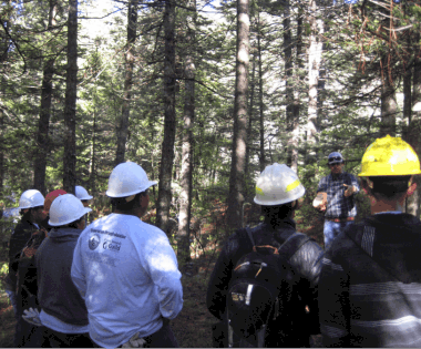 Summer Program for Teenagers Addresses Wildfire Risk in New Mexico