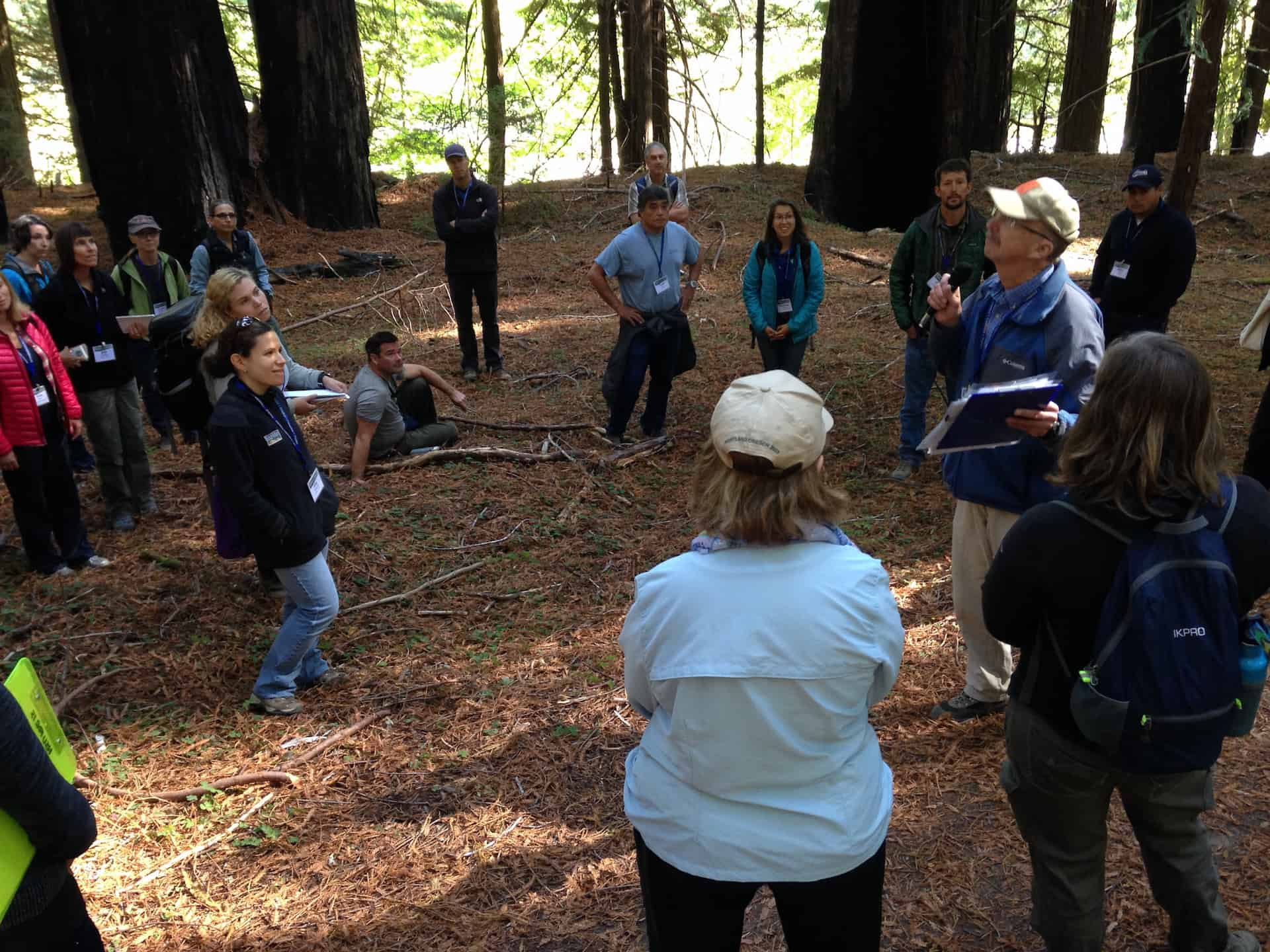 Field tour participants standing in an area burned in the 2003 Canoe Fire in Humboldt Redwoods State Park (Sept. 15, 2016).