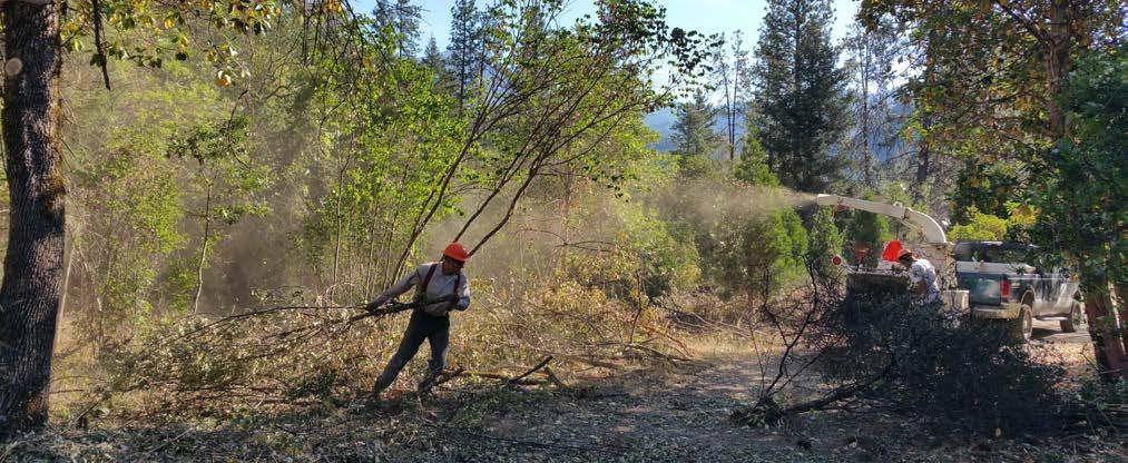 Local mitigation work