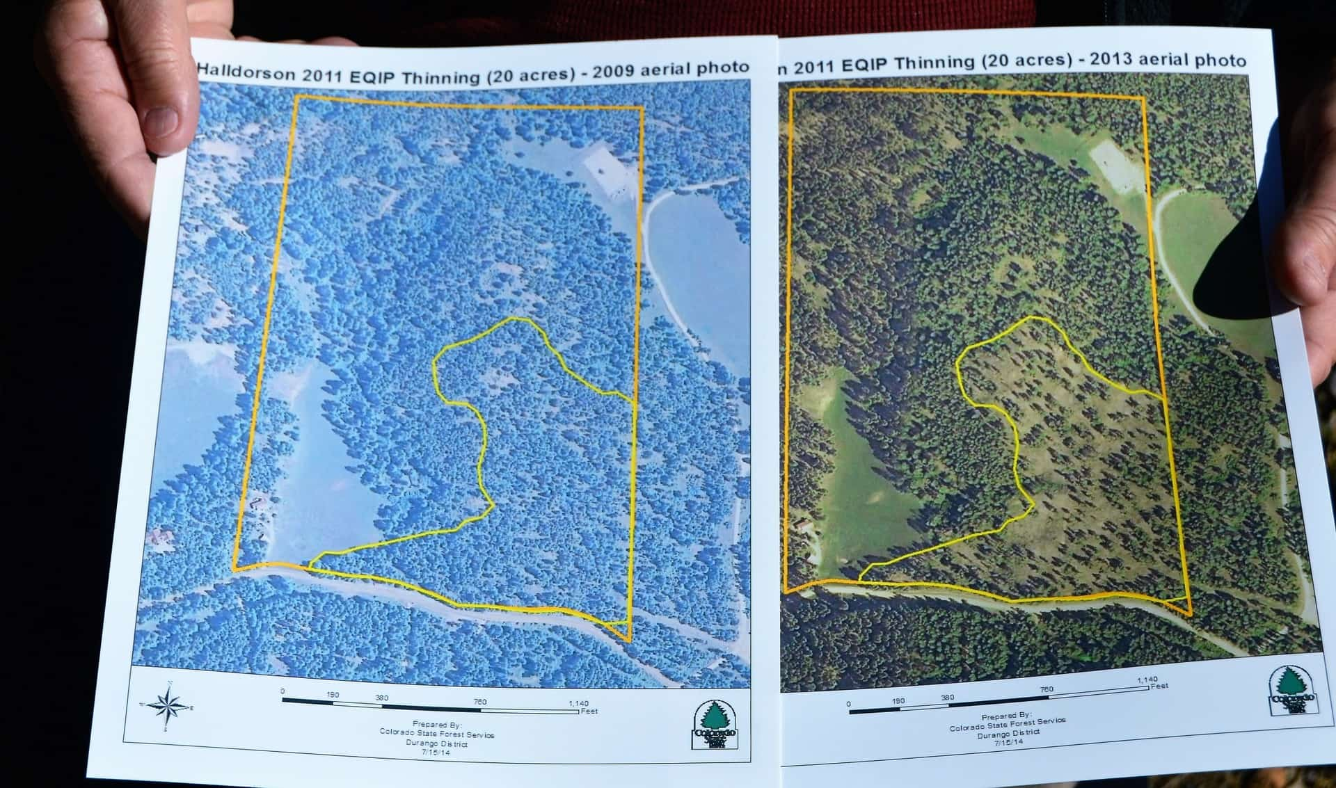 A photo of the before and after maps of the treatment area.