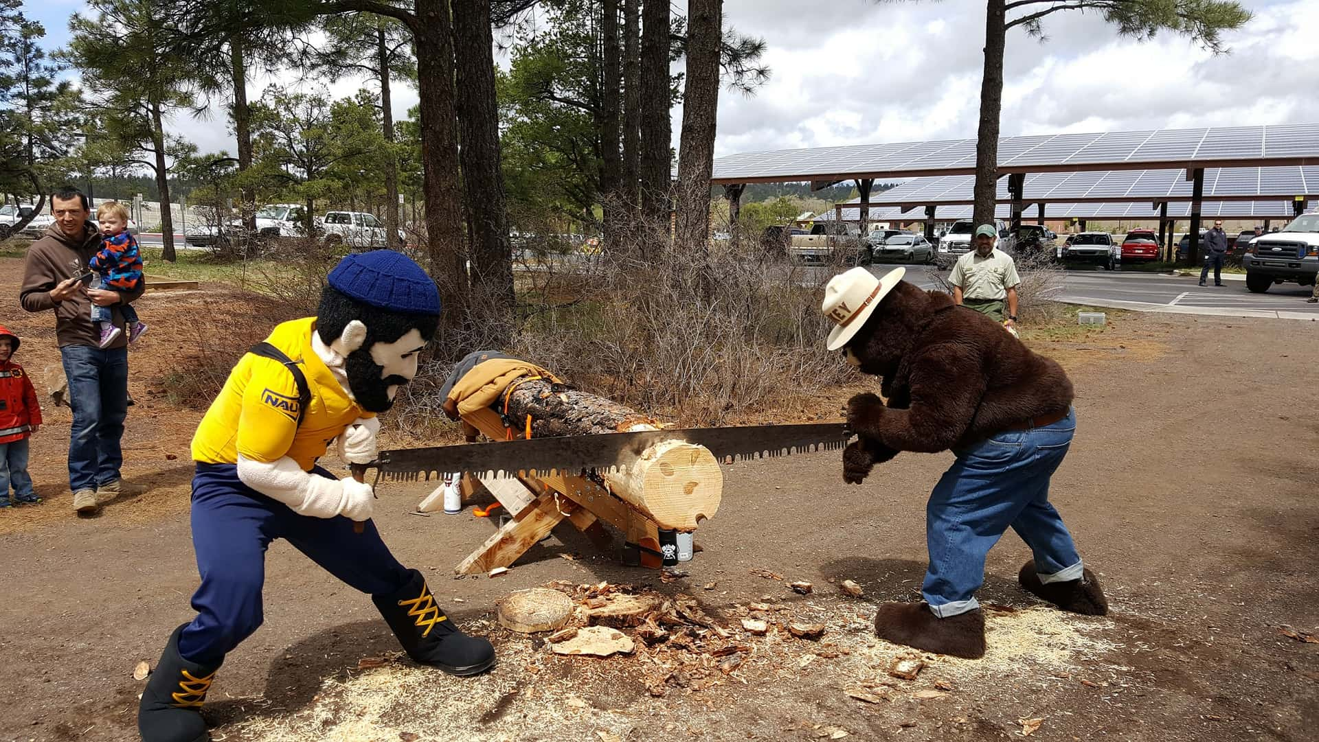 Smokey Bear and Louie the Lumberjack using a crosscut saw to saw a log