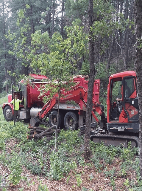 The trees removed for wildfire mitigation were cut into logs, stacked and then collected from the forest.
