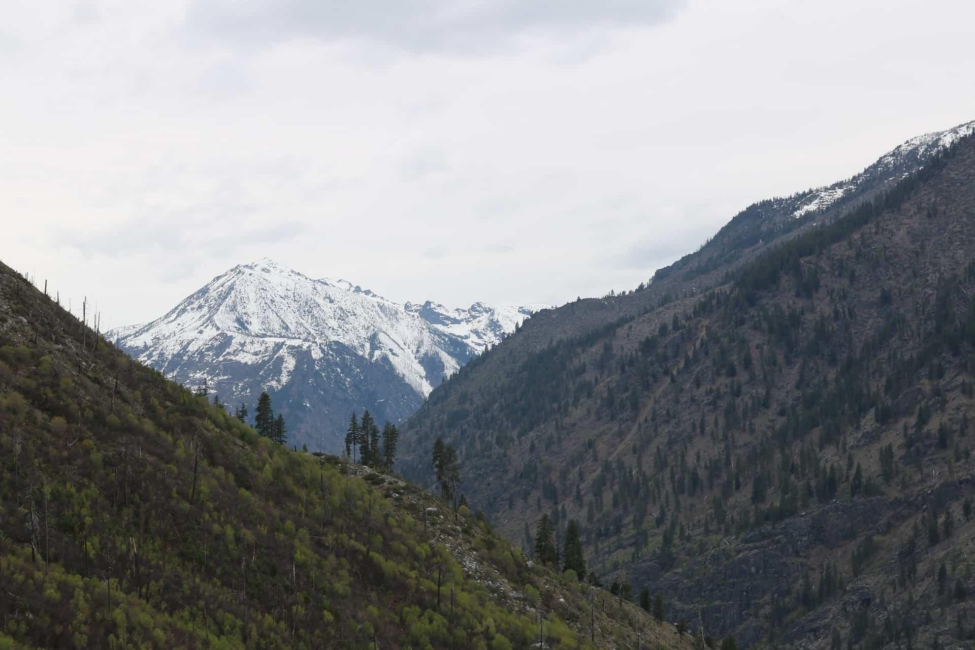 Landscape shot of Mount Rainier and surrounding mountains