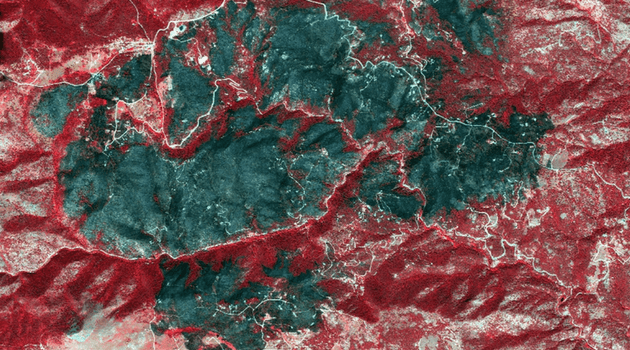 Satellite image of burned homes after the Fourmile Canyon Fire