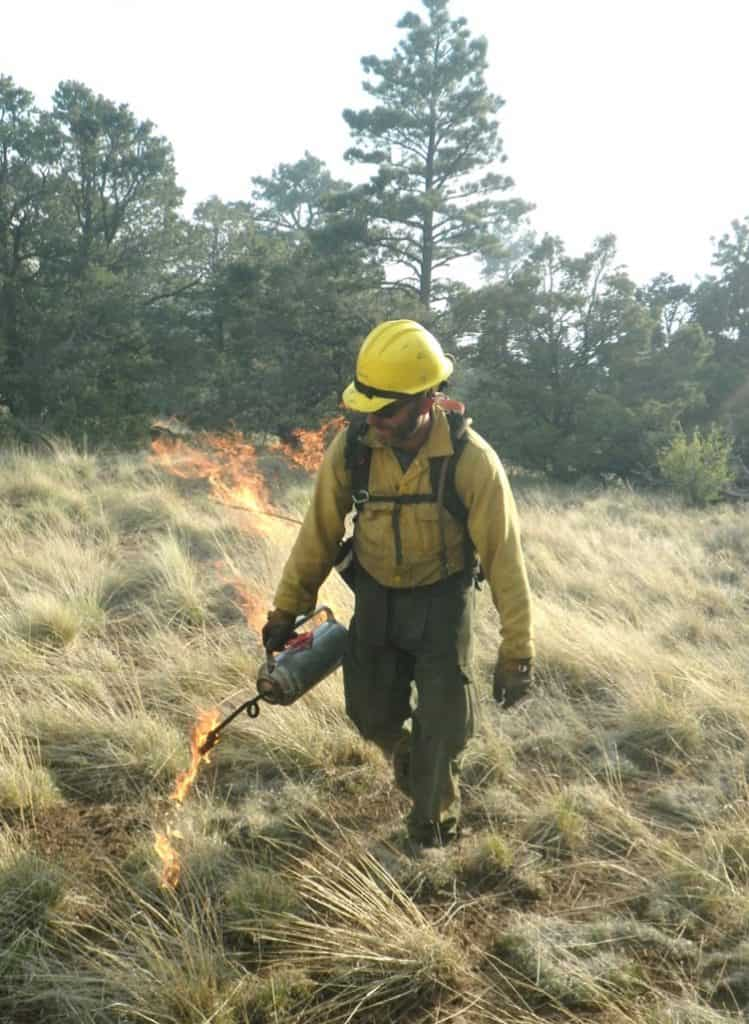 Dave using a drip torch to ignite a grassland