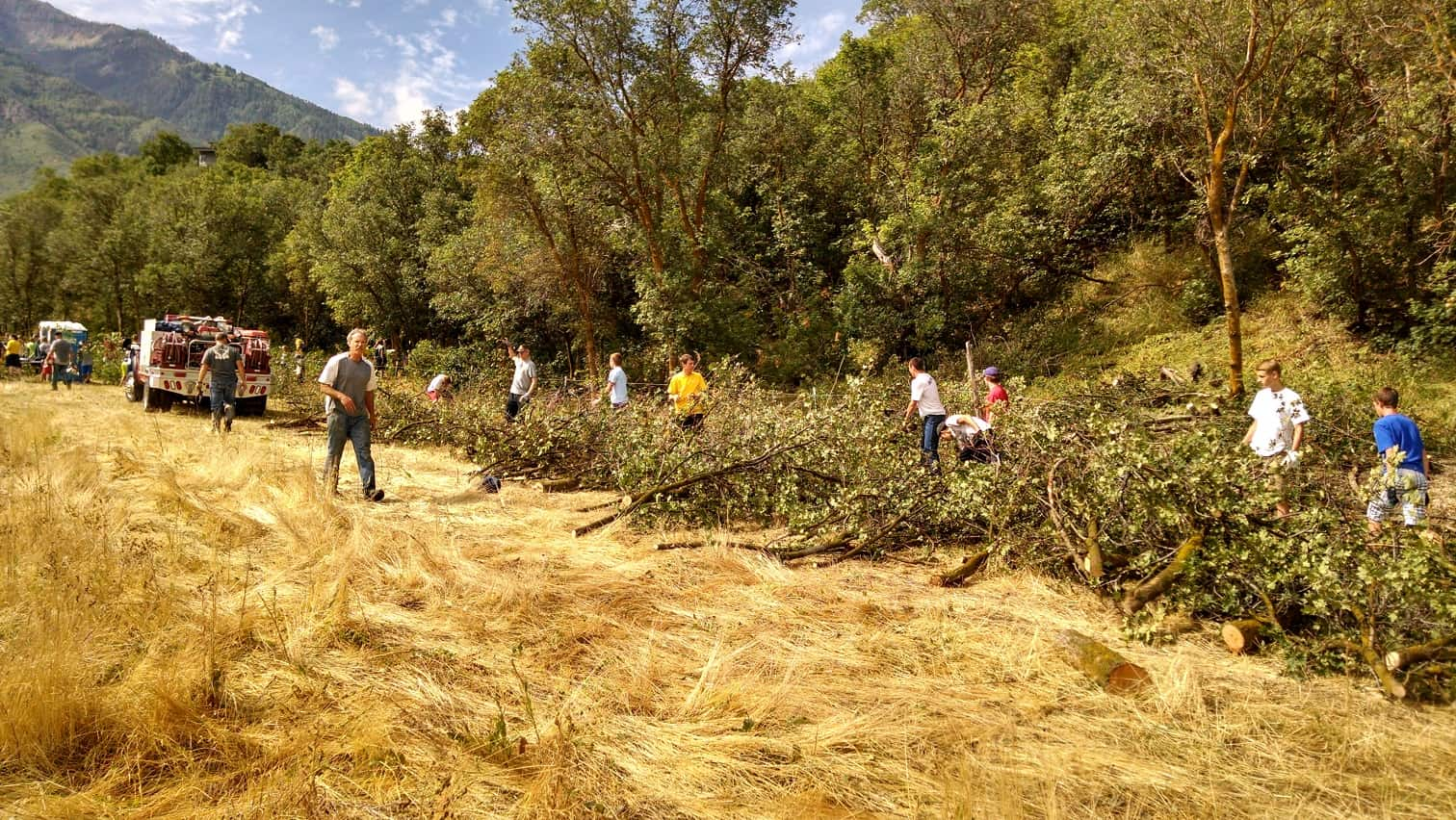 Students piling tree cuttings in a field.