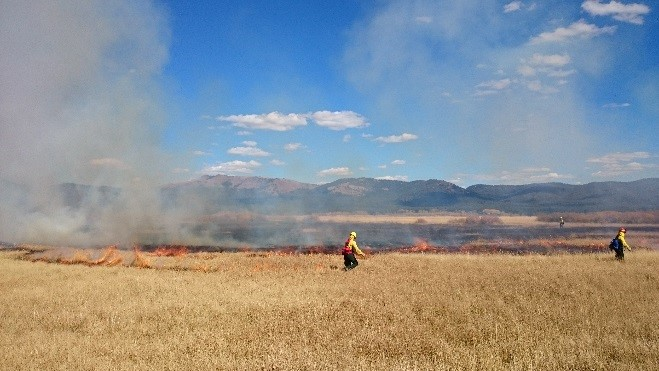 Two firefighters manage what was a successful prescribed fire.