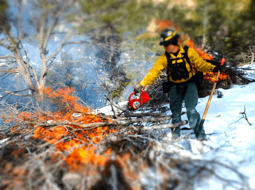 Firefighter igniting a pile