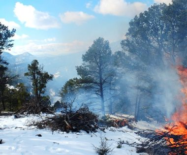Winter Pile Burning Highlights: Snow Tips, Outreach and a Surprise