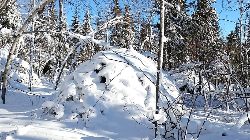 Snow covered pile.