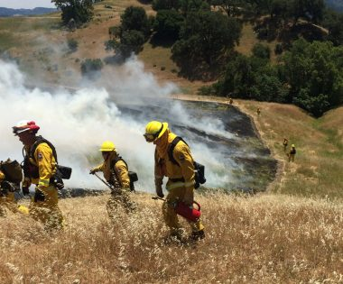 Lend a Hand: Models for Increasing Prescribed Fire Operational Capacity