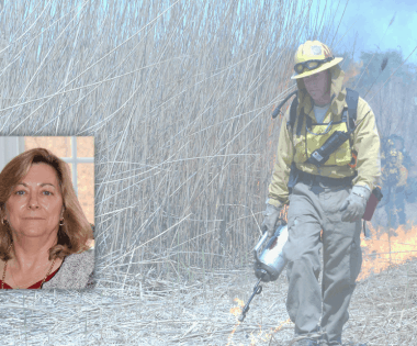 Working with Fire-Prone Communities in the Northeast: An Interview with Maureen Brooks