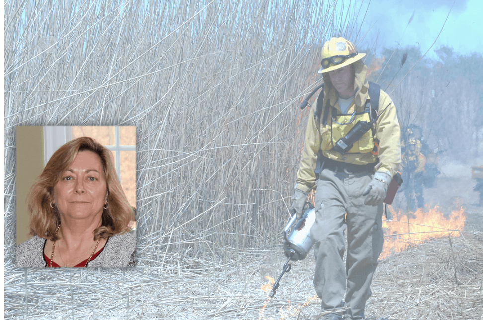 Profile image of Maureen Brooks with a banner image of a burner igniting invasive grass in the background