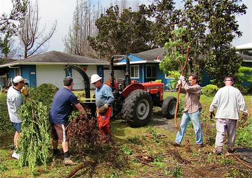 A group of people clearing vegetation from a neighbor's front yard; FAC in Hawaii in action
