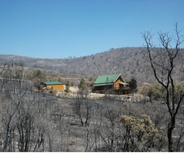 Making Lemonade from Lemons: How Intense Wildfire Seasons Yielded Utah's New Wildfire Policy