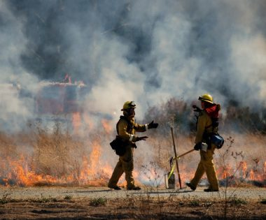 Science Tuesday: Give Your Input on Prescribed Fire Outreach Needs!