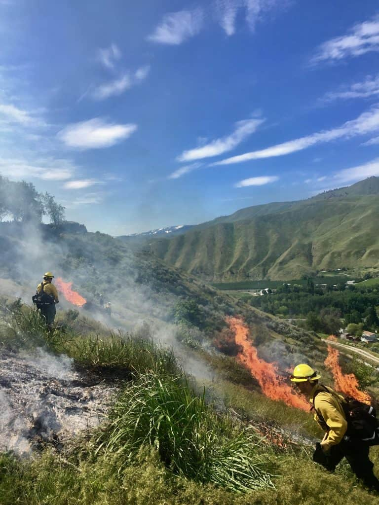 Sagebrush pile burning