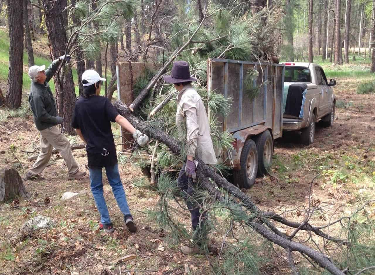 Community members loading a trailer with woody debris as part of Wildfire Community Preparedness Day; continue reading for wildfire preparedness ideas