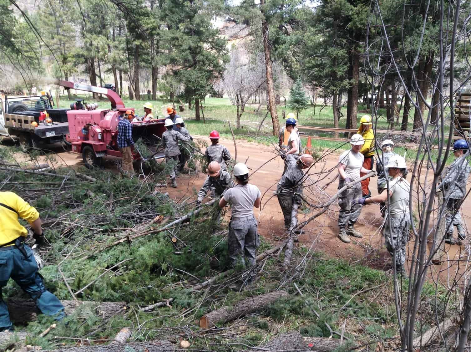 People loading trees into a chipper as part of the outreach and home wildfire risk assessment happening in Palmer Lake, CO