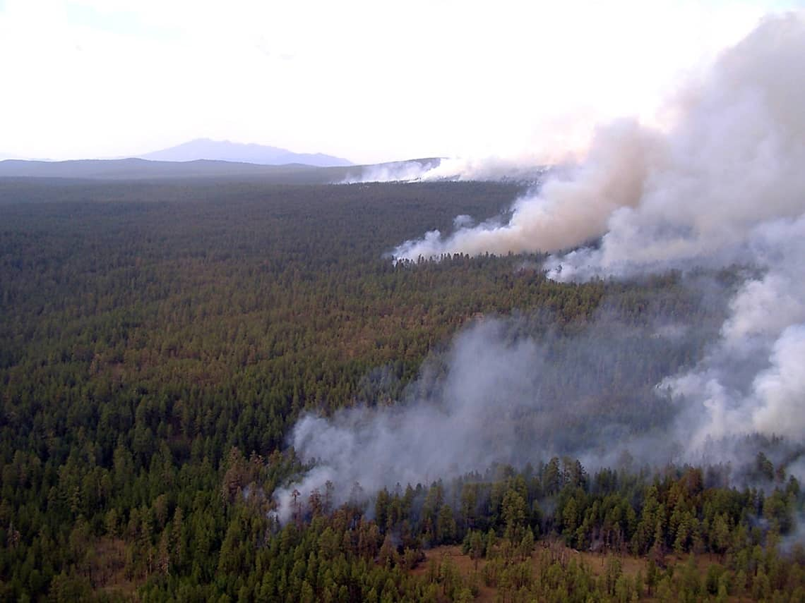 Landscape image of wildland forest fire