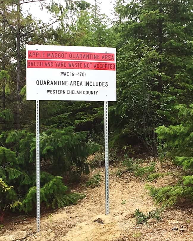 """Road sign reading, """"Apple Maggot Quarantine area; brush and yard waste not accepted. Quarantine area includes Western Chelan County."""""""
