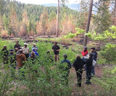 "Telling the ""Good Fire"" Story: Two Communities' Prescribed Fire Outreach Efforts"