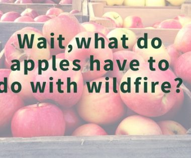 Fantastic Failure: Apple Maggots? Fire Management and Pest Management Meet