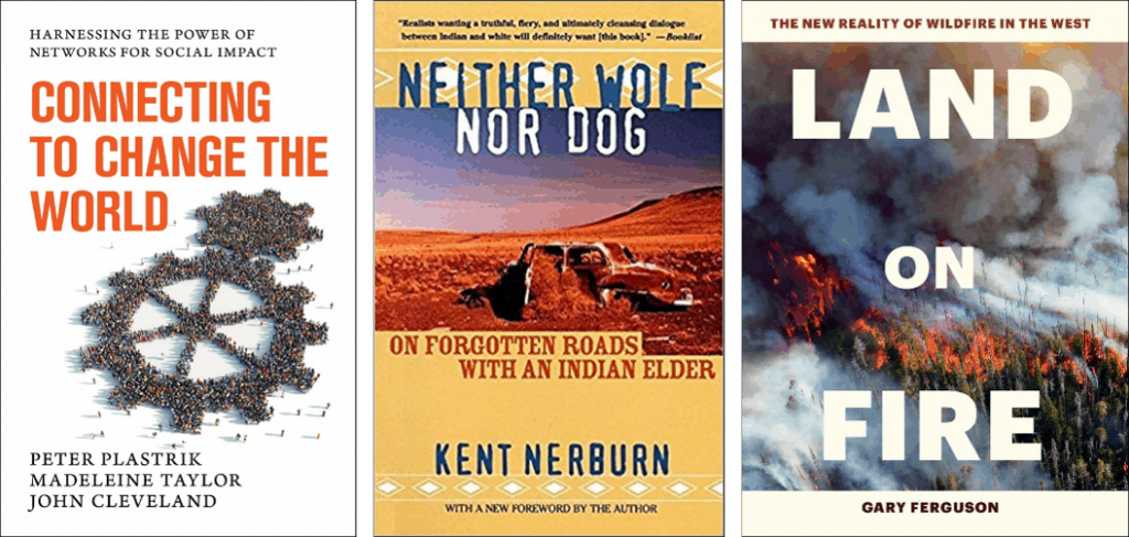 Covers of three wildfire and/or behavior change books