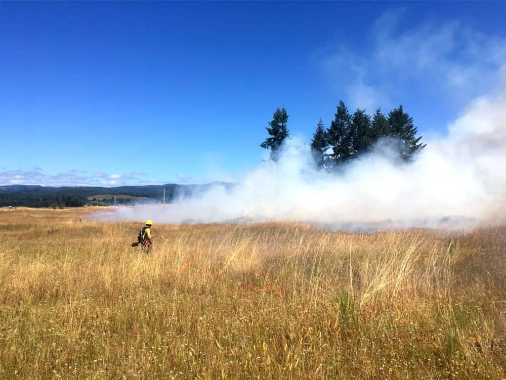 Prescribed fire in a prairie, supported by the Washington Prescribed Fire Council