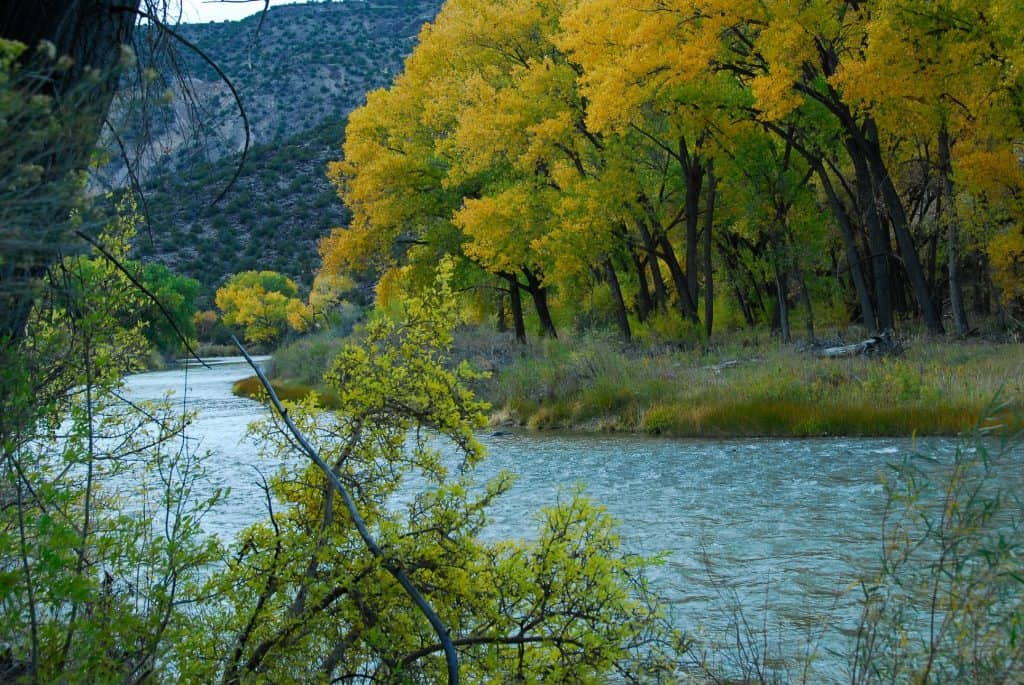Rio Grande Water Fund Links Fire and Water in New Mexico