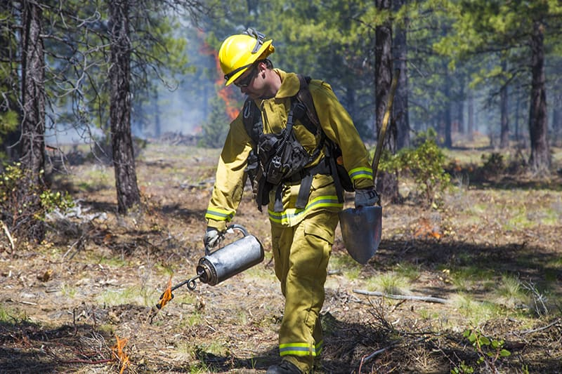 Fire practitioner igniting a prescribed fire with a driptorch, a key technique is addressing Central Oregon wildfire