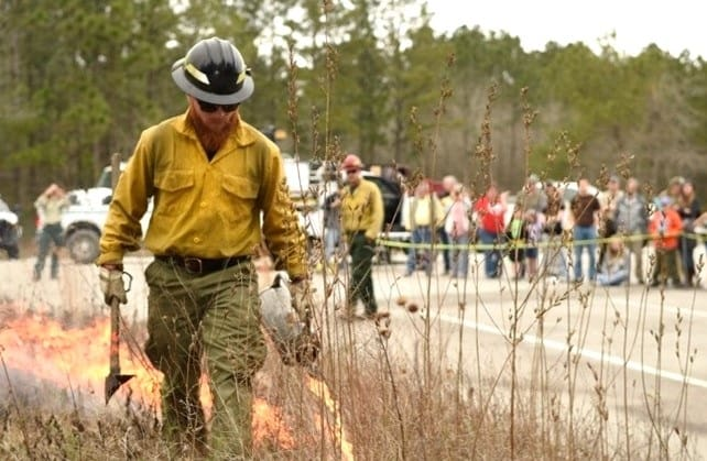 Community members watching a prescribed fire practitioner use a drip torch to ignite fire.